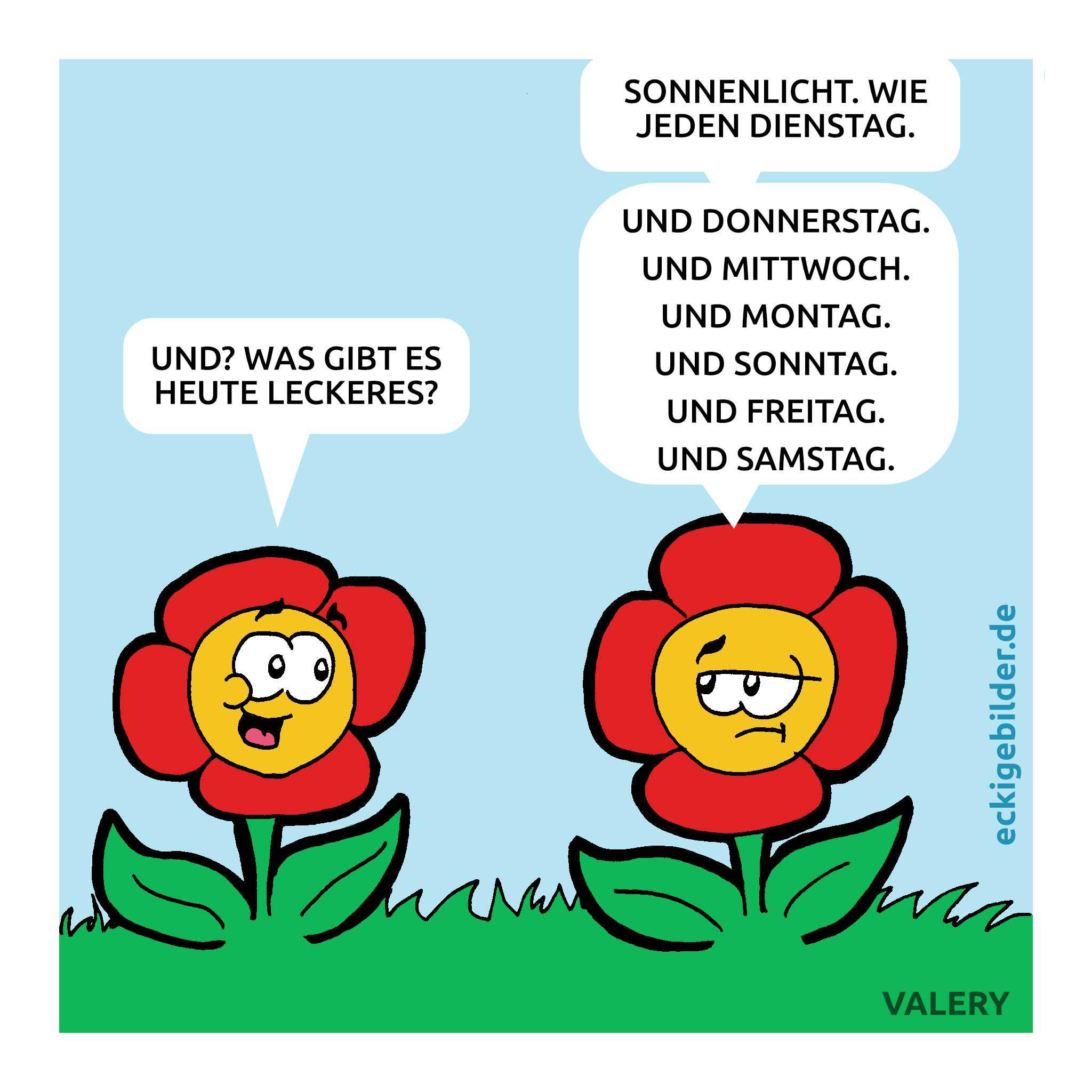 Blumen Cartoon